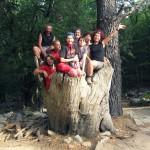 gruppo castagno-lontano-600