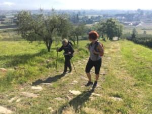social trekking pistoia cammino colline