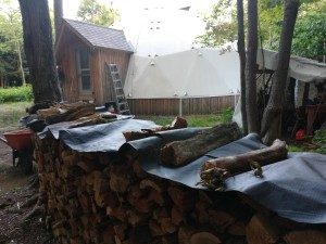 Rifornimento di legna indispensabile per combattere il gelo invernale canadese